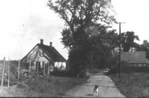 1946: Meget tyndt befolket.