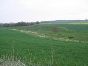 Storkesig-Bak