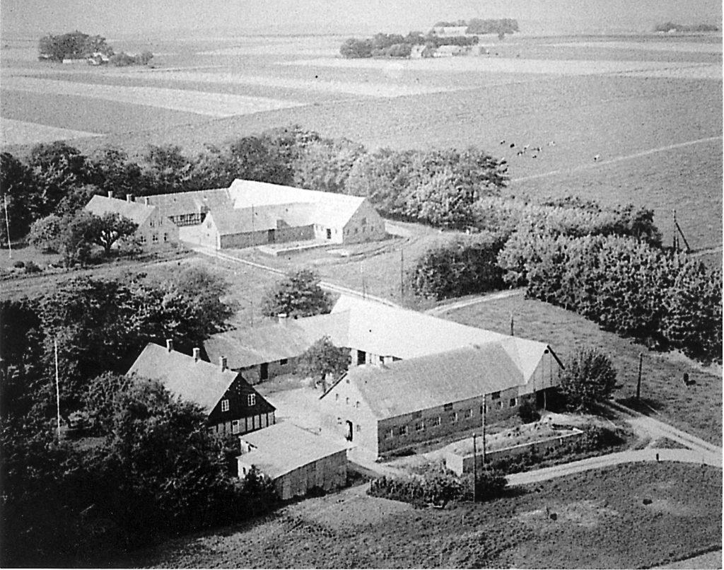 Nyvangsgårdene set mod nordvest omkring 1950.