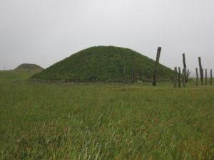 Udsnit af området: Bagest t.v. den fredede højrest af Borum Eshøj, i forgrunden rekonstrueret gravhøj med stolpemarkering af stenalderhus.